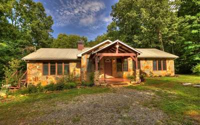 Ellijay Single Family Home For Sale: 333 Orchard Loop