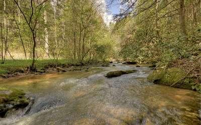 Ellijay Single Family Home For Sale: 54 Otahki Trail