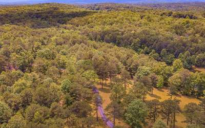 McCaysville Residential Lots & Land For Sale: Grant's Summit