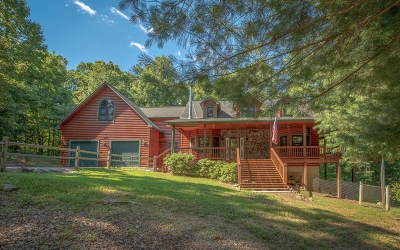 Blairsville Single Family Home For Sale: 50 Ivy Meadow Spur
