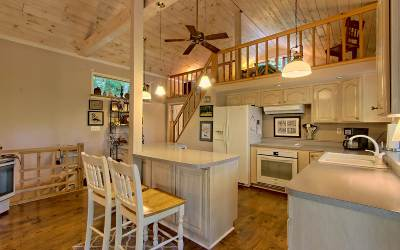 Suches Single Family Home For Sale: 207 Northside Mtn. Road