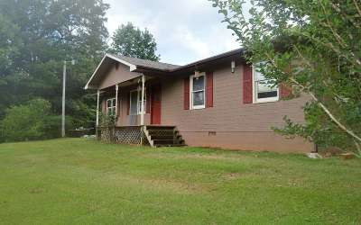 Hiawassee Single Family Home For Sale: 1419 Owl Creek Road