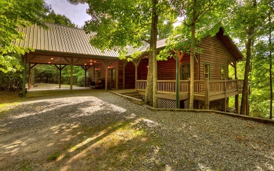 Blue Ridge Single Family Home For Sale: 85 Ridgeview Estates