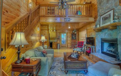 Blairsville Single Family Home For Sale: 138 Rippling Waters Road
