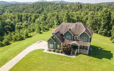 Ellijay Single Family Home For Sale: 153 Johnson Mill Road