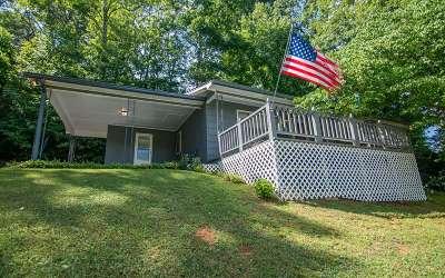 Blue Ridge Single Family Home For Sale: 185 Boardtown Rd.