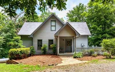 Blue Ridge Single Family Home For Sale: 196 Pine Lane