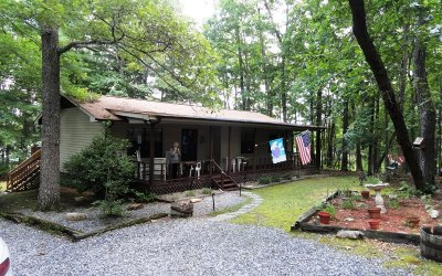 Blairsville Single Family Home For Sale: 98 Blueberry Lane