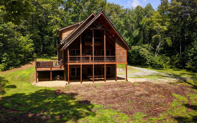 McCaysville Single Family Home For Sale: 555 Indian Trail