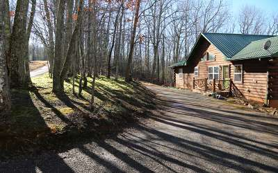 Murphy Single Family Home For Sale: 295 Beaver Gap Rd