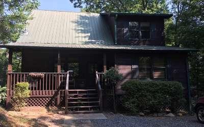 Ellijay Single Family Home For Sale: 799 Walnut Mountain Road