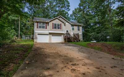 Ellijay Single Family Home For Sale: 458 Wingate Rd