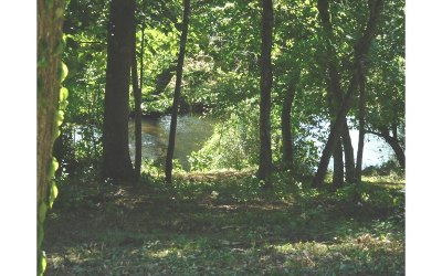 Blairsville GA Residential Lots & Land For Sale: $67,000
