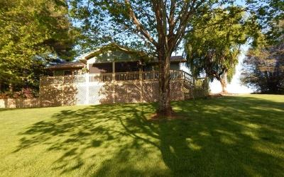Hayesville Single Family Home For Sale: 41 Little Brook Terranc