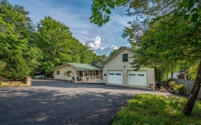 Blairsville Single Family Home For Sale: 1048 Gibbs Road