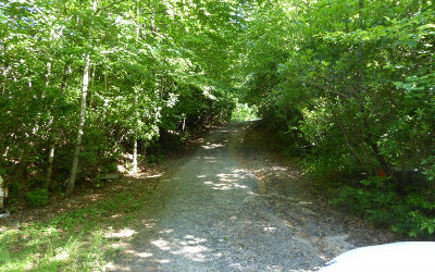 Hayesville Residential Lots & Land For Sale: 60 Ac Tate City Road