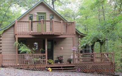 Blue Ridge Single Family Home For Sale: 600 Laurel Circle