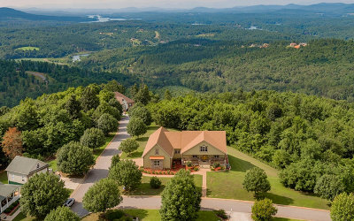 Blairsville Single Family Home For Sale: 594 Summit Trace
