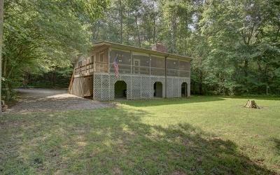 Blairsville Single Family Home For Sale: 249 River Refuge Blvd