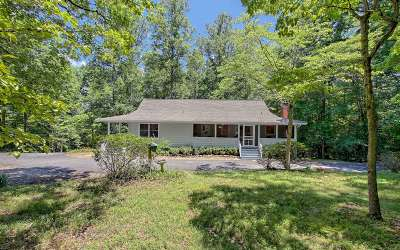Blairsville Single Family Home For Sale: 848 Eagle Bend Road
