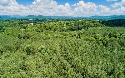 Ellijay Residential Lots & Land For Sale: Lt23 Foxpaw Leaf Ln