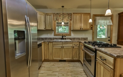 Blairsville Single Family Home For Sale: 54 Pauline Road