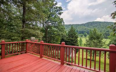 Blue Ridge Single Family Home For Sale: 300 Harris Drive
