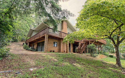 Hiawassee Single Family Home For Sale: 451 Twin Oaks Rd
