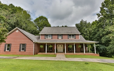Ellijay Single Family Home For Sale: 186 Berry Hill