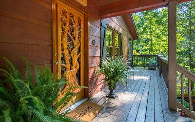 Ellijay Single Family Home For Sale: 484 Sleepy Hollow Road