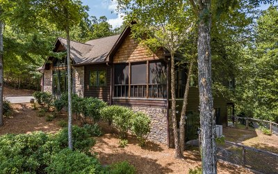 Blue Ridge Single Family Home For Sale: 79 Sunrise Gap