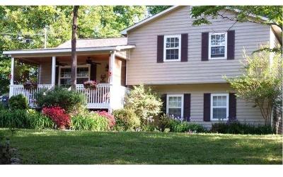 Ellijay Single Family Home For Sale: 250 Flat Creek Church Rd