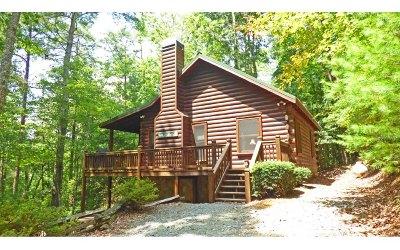 Cherry Log Single Family Home For Sale: 1034 Hidden Lake Drive