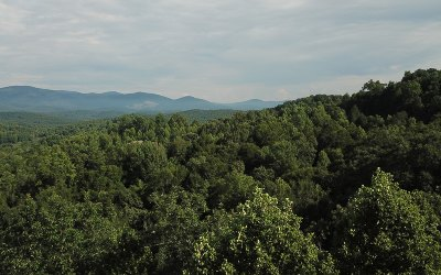 Ellijay Residential Lots & Land For Sale: 3.85 Bryant Creek Road