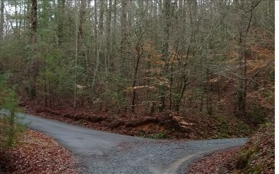 Ellijay Residential Lots & Land For Sale: 24/25 Maple Rest Lane