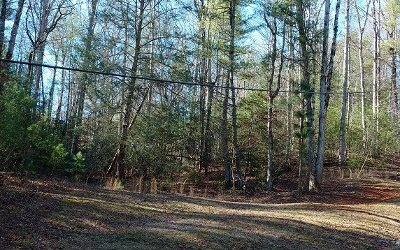 Ellijay Residential Lots & Land For Sale: Lt 21 Cole Road