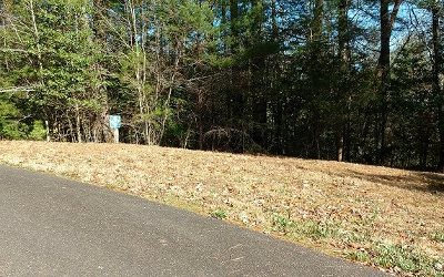 Ellijay Residential Lots & Land For Sale: 33/34 Maple Rest Trail