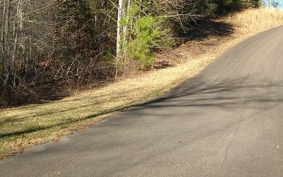 Ellijay Residential Lots & Land For Sale: Lt 42 Maple Rest Trail