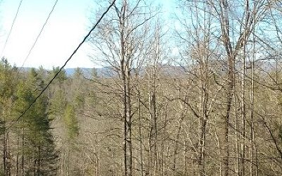 Ellijay Residential Lots & Land For Sale: Lt 30 Parks Mountain Road