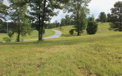 Blairsville Residential Lots & Land For Sale: 1 Riverside On Lake