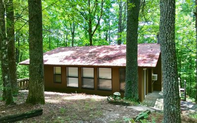 Ellijay Single Family Home For Sale: 671 Amber Lane