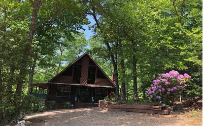 Blairsville Single Family Home For Sale: 127 Wild Turkey