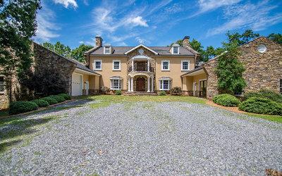 Blairsville Single Family Home For Sale: 335 Goshen Cove