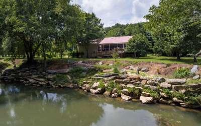 Murphy Single Family Home For Sale: 375 Little Ranger Road