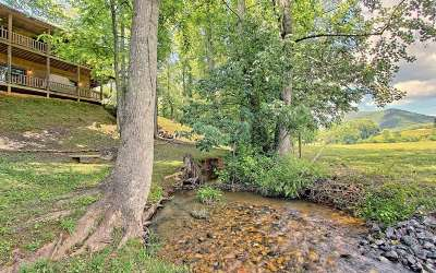 Hiawassee Single Family Home For Sale: 1780 Hunnicutt Road