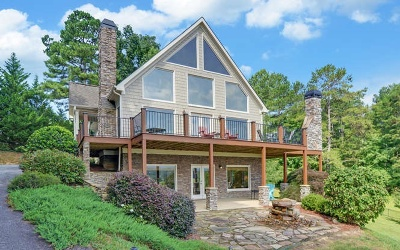 Blairsville Single Family Home For Sale: 95 W River Lake Dr