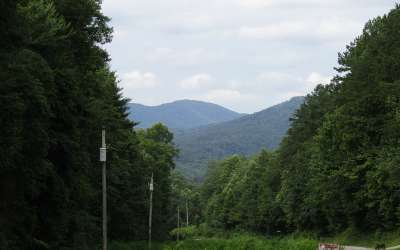 Brasstown Residential Lots & Land For Sale: Green Cove Rd
