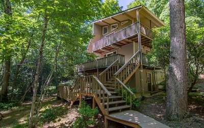 Blue Ridge Single Family Home For Sale: 44 Hemlock
