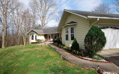 Warne Single Family Home For Sale: 480 Henson Rd
