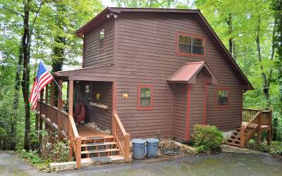 Hiawassee Single Family Home For Sale: 1228 Taylor Road